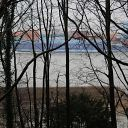 Elbe, forest, tree, container ship