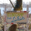 Elbe, Falkensteiner Ufer, tree, Elbe Camp