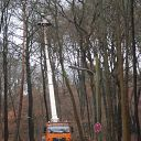 truck, traffic sign, Falkensteiner Weg, forest