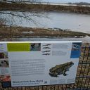 placard, Falkensteiner Ufer, water basin, fence, ice